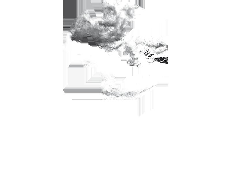 Coleo Showroom Nc 17 Image Logo